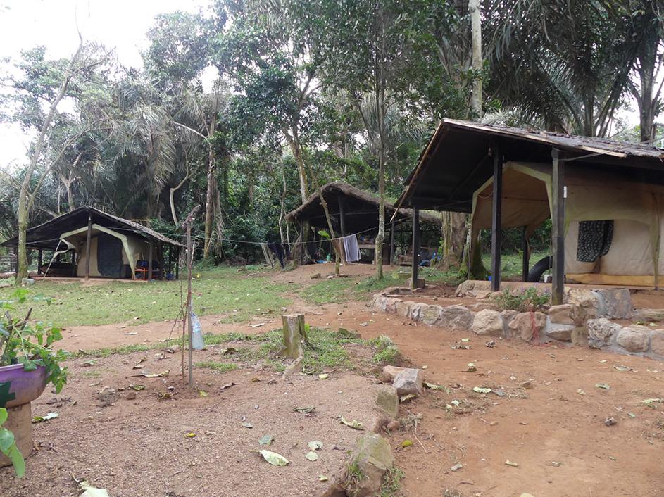 Bilduntertitel: Das Firefly Camp auf Banda-Island