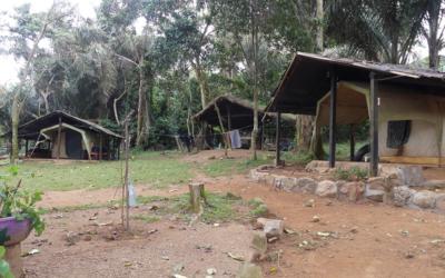 Banda Island: The success story of a test island
